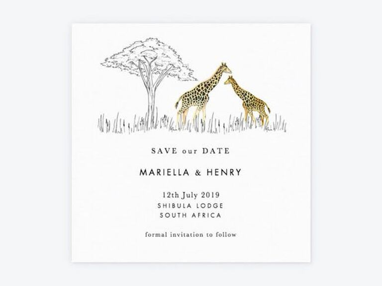 safari destination wedding save the date