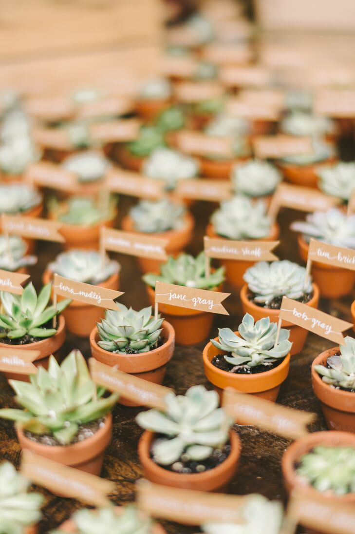 Potted Succulent Escort Card Favors