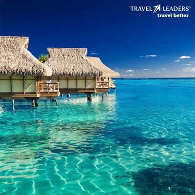 Travel Leaders Indy