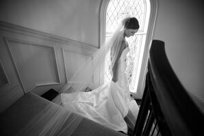 Classic Cathedral-Length Tulle Veil