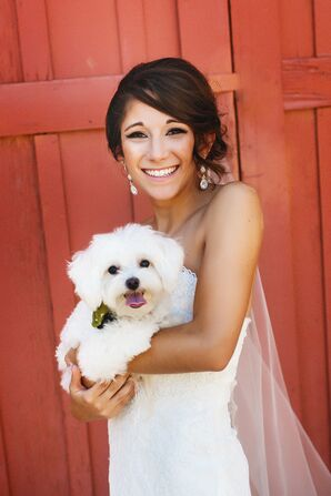 Wedding Day Bride and Puppy Photo