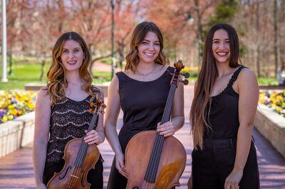 The Skylark Trio