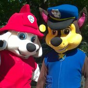 Methuen, MA Costumed Character | Cool Characters