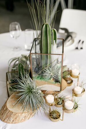 Succelent and Cacti Centerpieces at South Congress Hotel in Austin, Texas