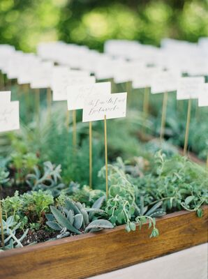 Greenery Escort Cards at Marathon, Texas Wedding