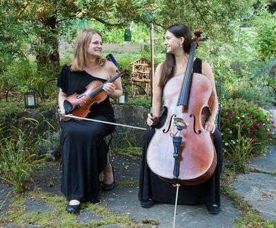 Pure Harmony Strings