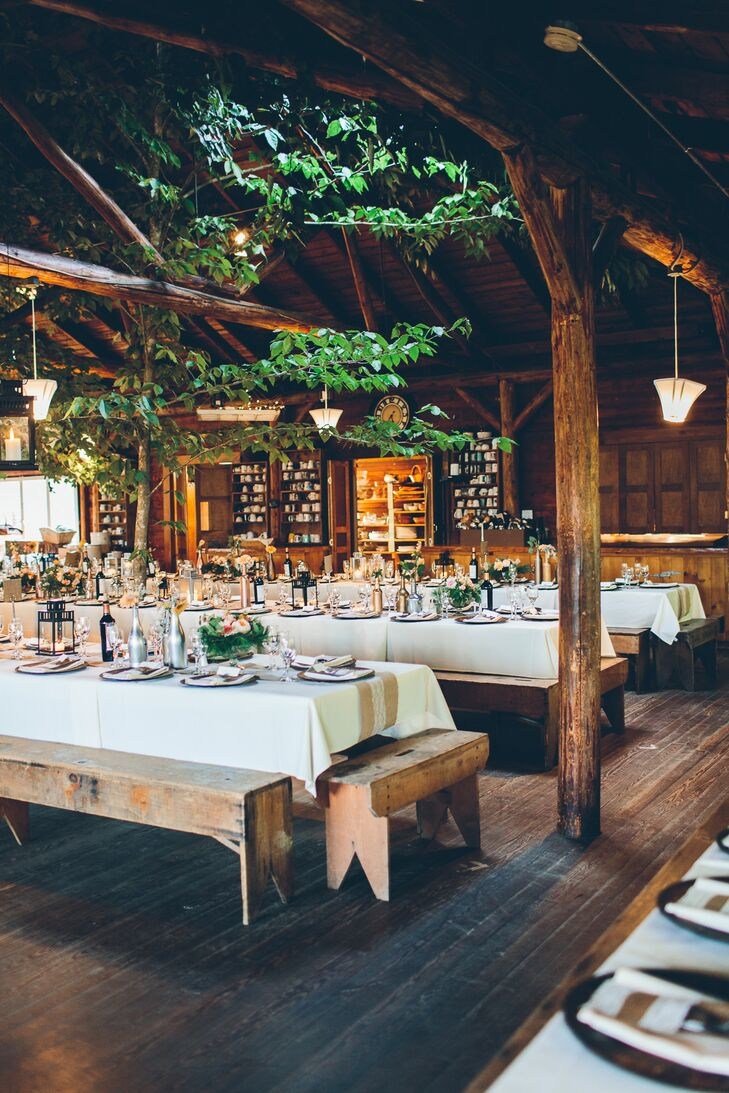 Rustic Reception with Hanging Greenery and Bench Seating