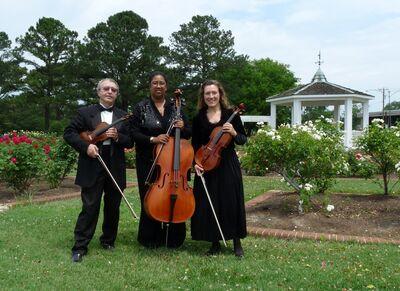 Arte Musicale String Ensemble