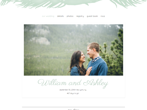 wedding websites best wedding websites preview
