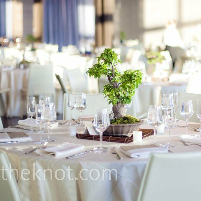 For a clean look, the tables were topped with cream linens, green centerpieces and a few votive candles.