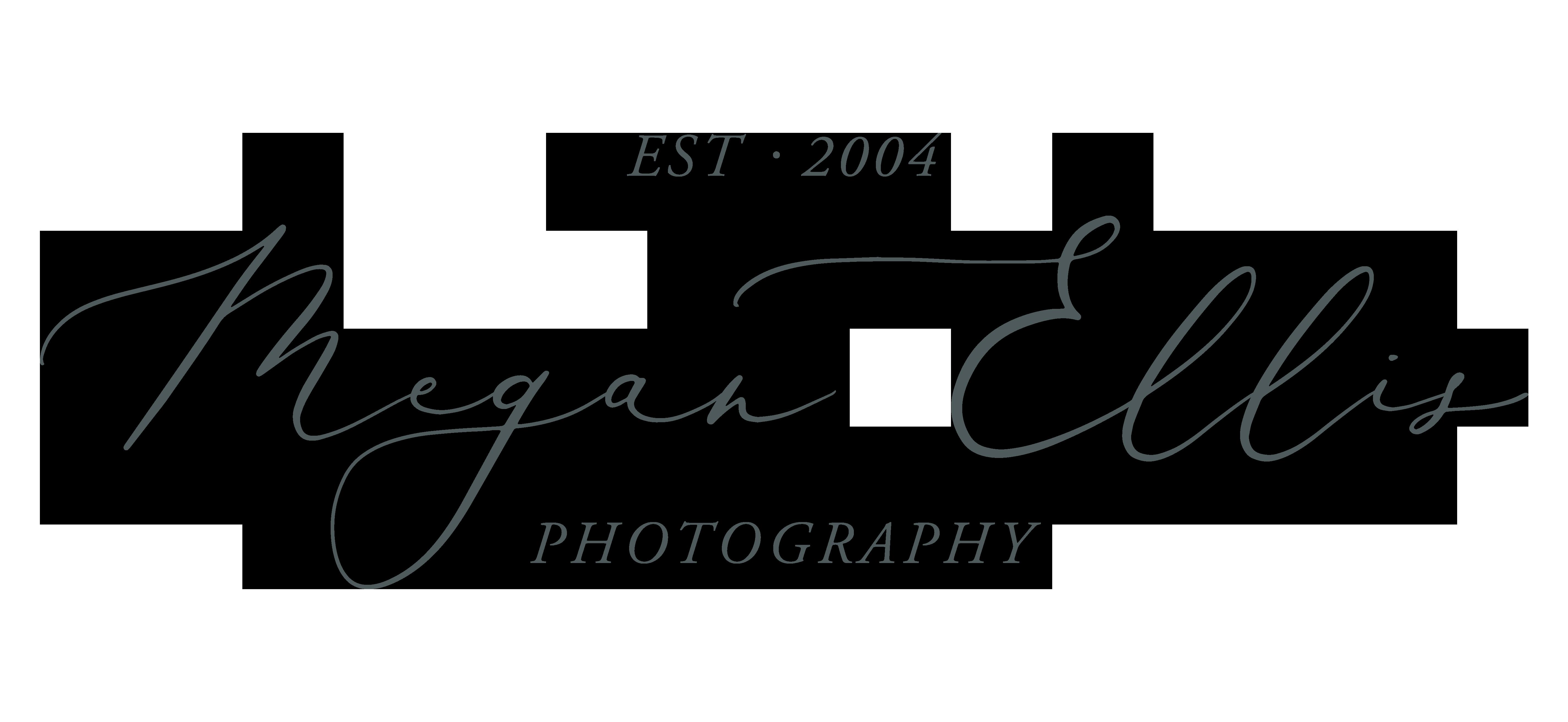 Megan Ellis Photography The Knot