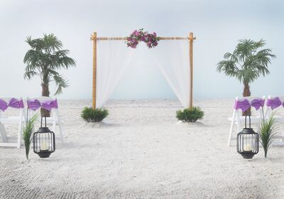 Florida Paradise Weddings