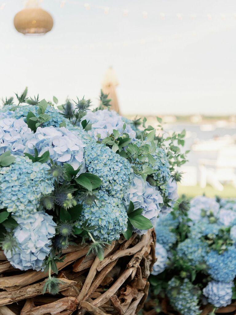 Preppy blue hydrangeas as wedding flowers