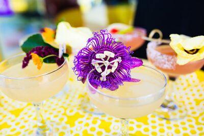 Drink Slingers - Spirited Servers of Spirits
