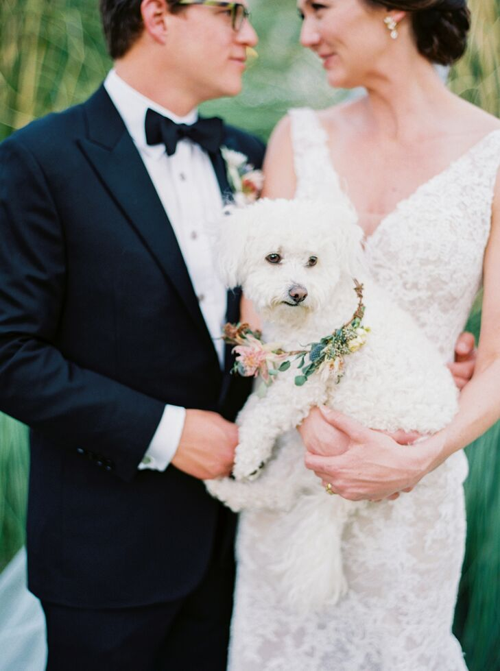 Dog with Floral Collar at Marathon, Texas Wedding