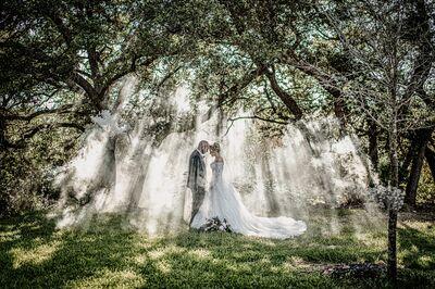 Blu Tree Studios Photography