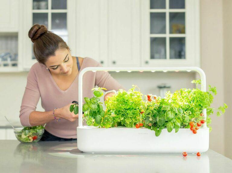 person harvesting produce from indoor smart garden