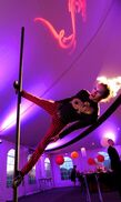 Boston, MA Circus Performer | Boston-Circus
