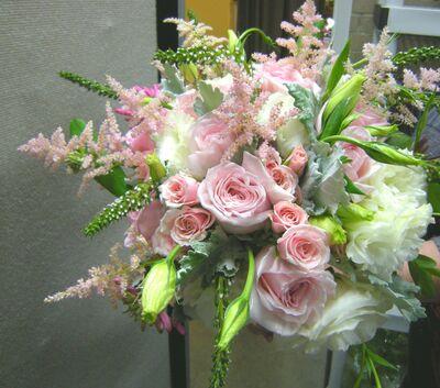 Blossom Designs
