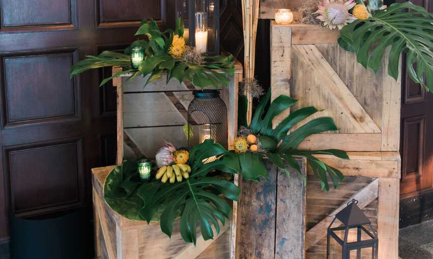 Jungle party themed inspiration and ideas
