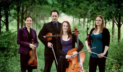 The Innocenti Strings LLC