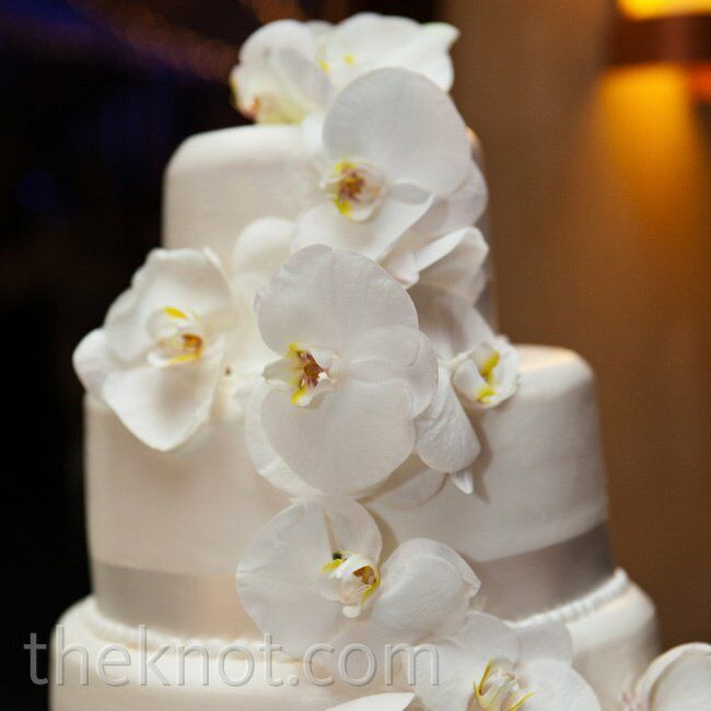 Fresh orchids decorated the white cake while still maintaining a clean, simple appearance.