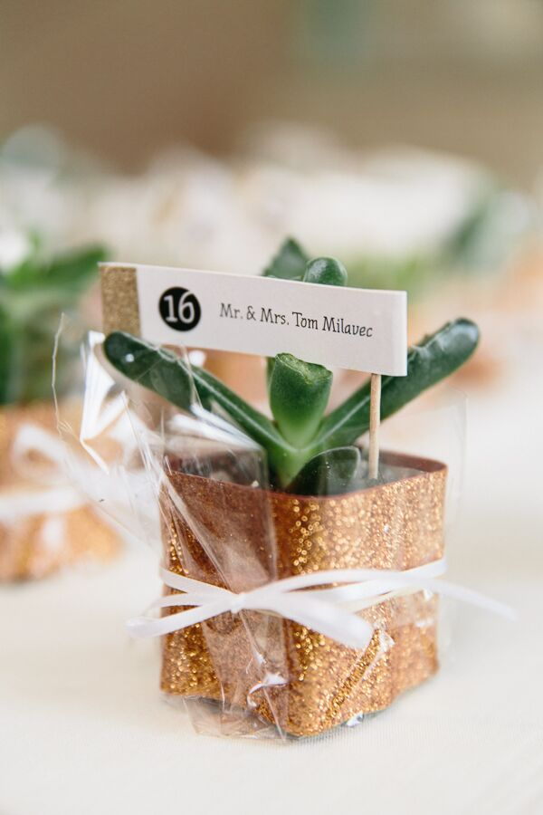 The small succulent wedding favors doubled as escort cards, with little gold-trim signs indicating guests' seating assignments. For a touch of glam, the succulents were potted in glittery gold holders.
