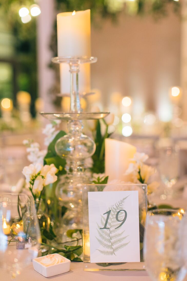 Modern Table Number with Fern Illustration