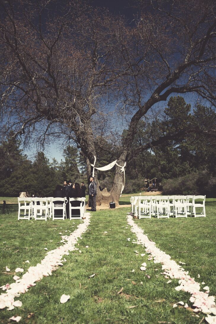 The outdoor ceremony took place at William Heise County Park, with white folding chairs facing the large tree tied with white sheets.