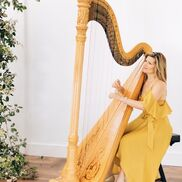 Brooklyn, NY Harp | Kirsten Agresta Copely, Harpist