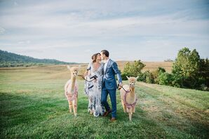 Couple with Alpacas at Early Mountain Vineyards in Madison, Virginia