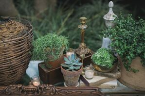 Arrangements of Vintage Decor and Succulents
