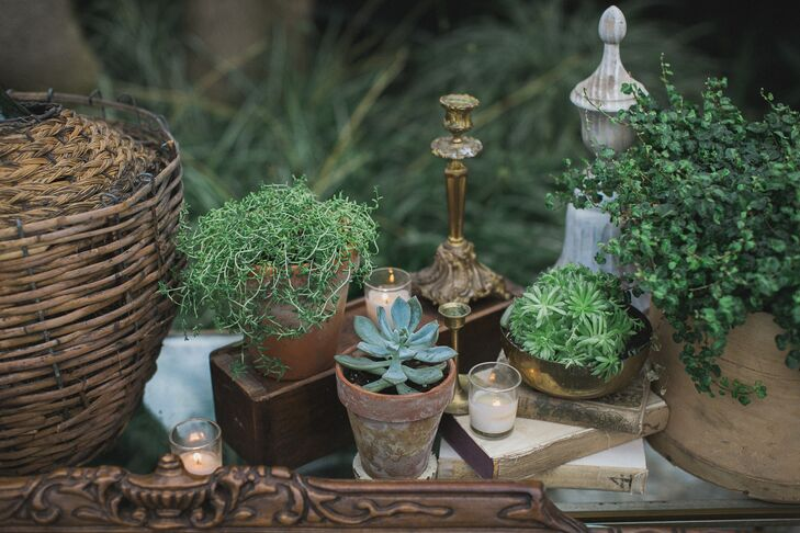 The greenhouse was beautifully decorated with antique trays, candlesticks, vases, baskets and small pots of succulents.