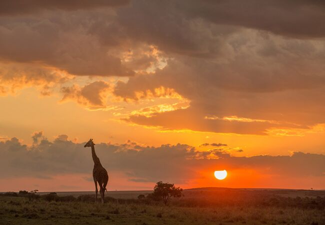 masai mara sunset | outdoor masai mara wedding ceremony | Jonas Peterson | The Knot blog