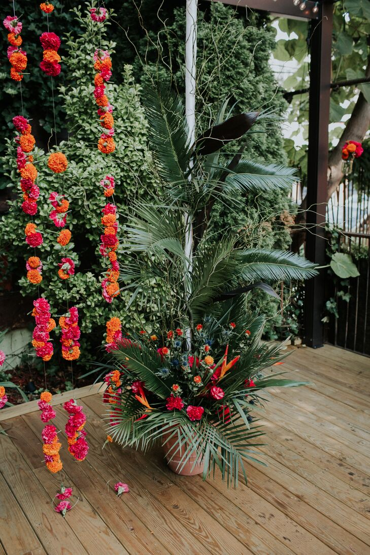 Arrangements of Tropical Plants and Colorful Flowers
