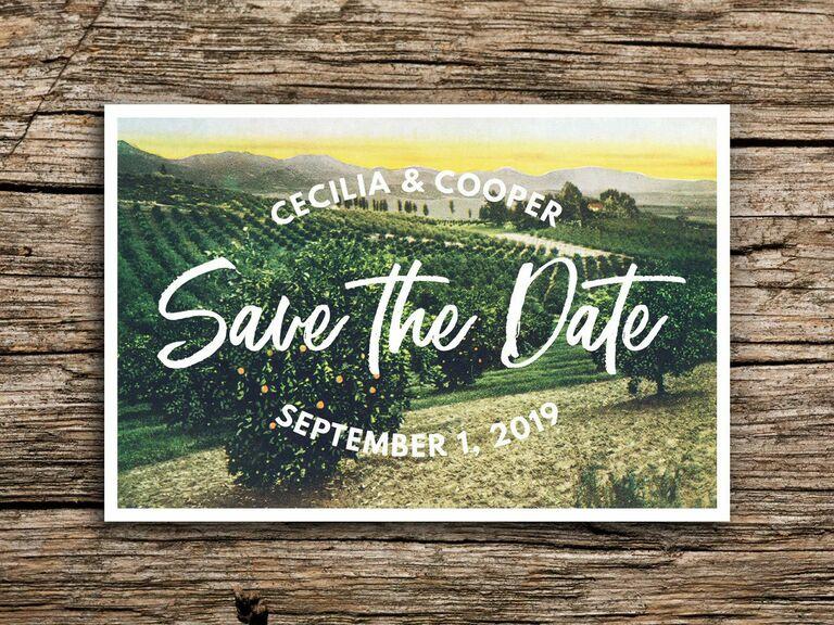 Etsy vineyard destination wedding save-the-date