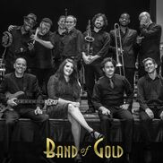 Lawrenceville, GA Variety Band | Band Of Gold