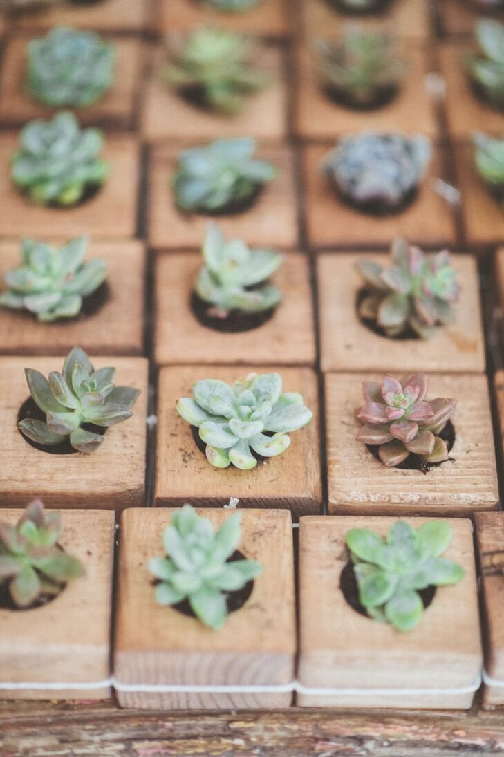To go along with the casual, rustic theme, Caroline and Michael skipped the traditional wedding favors and gave guests mini potted succulents to remember the occasion.