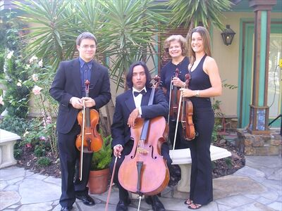 Houston Wedding & Reception String Music