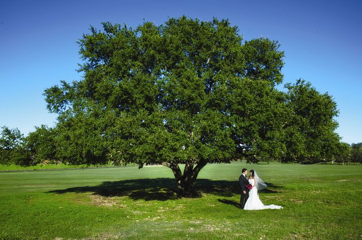 A gorgeous Southern oak tree that stood on The Wild Onion Ranch was a huge inspiration for the design and theme of the wedding.