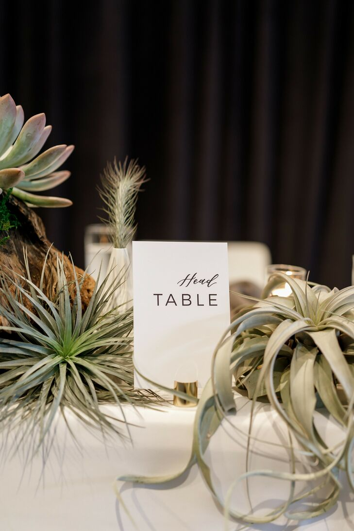 Table Number and Air Plants for Reception Decor at South Congress Hotel in Austin, Texas