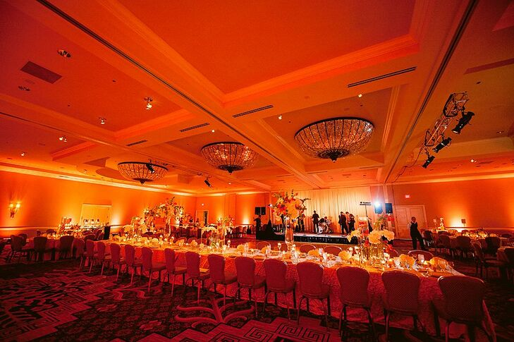 Coral Reception Lighting