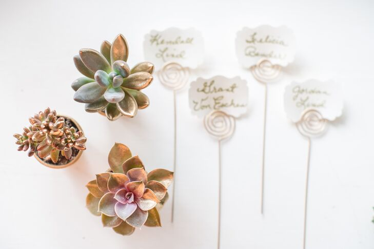Glam Gold Potted Succulent Favors
