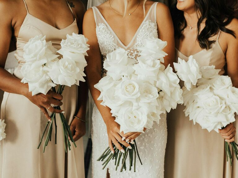Bride with bridesmaids wearing champagne dresses for summer wedding