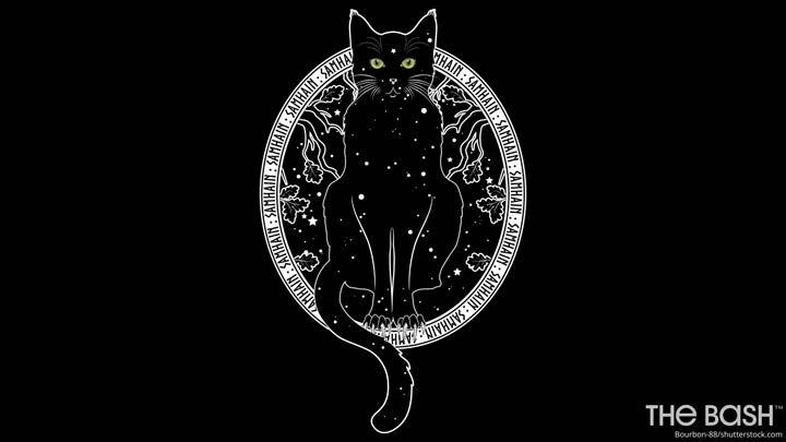 Halloween Zoom Background - Black Cat