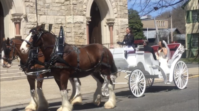 Peacefield Carriage LLC