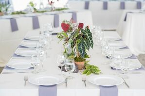 Simple Dining Table with Potted Plant Centerpieces