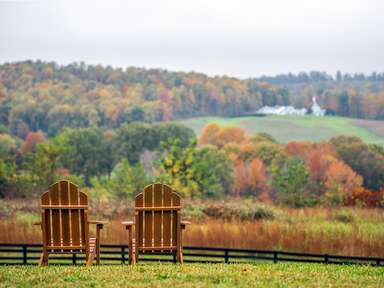 two wooden chairs overlooking virginia wine country