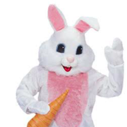Union City, NJ Easter Bunny | Santas And More