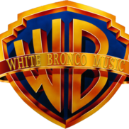 Buffalo, NY 90s Band | White Bronco